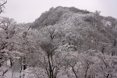 塔ノ岳北面の霧氷