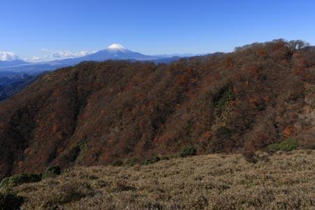 花立からの富士山